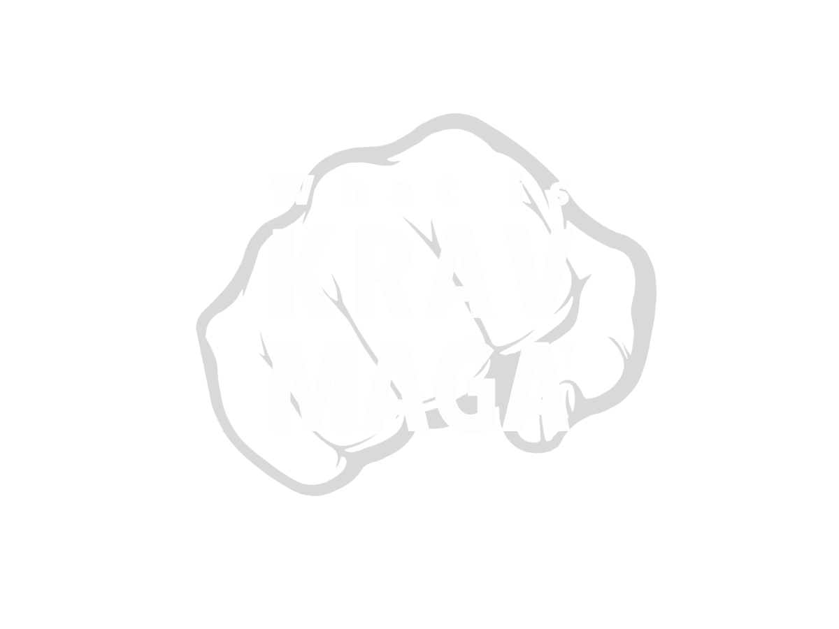 What is Krav Maga?